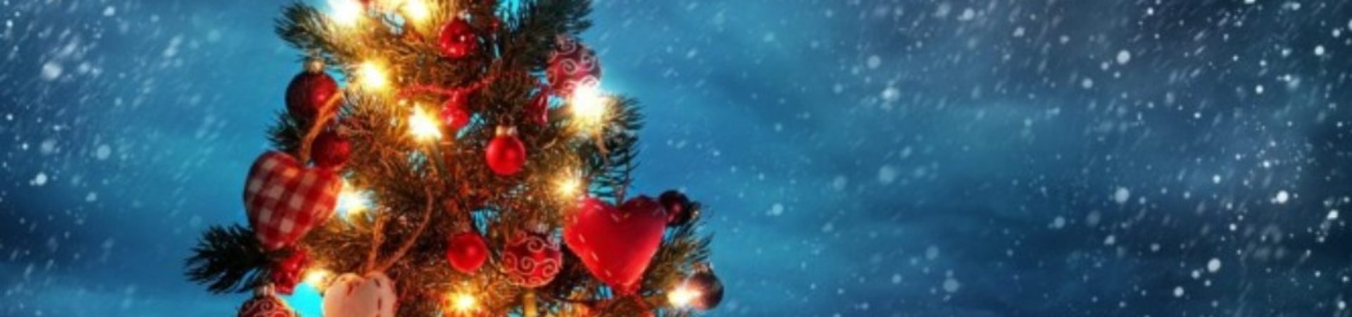 Želimo Vam Srećnu i uspešnu Novu godinu